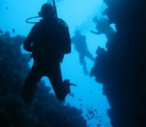 1073311_underwaterworld_in_the_red_sea_egypt